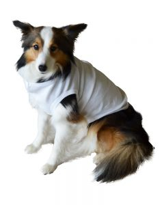 Dog Sublimation Tshirt, Pet Sublimation Shirt Dog Sublimation Shirt